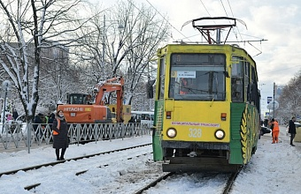 Проезд по «нулевому» маршруту в Краснодаре сделали бесплатным