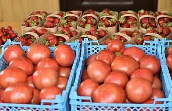 На Кубани организуют еще 600 нестационарных объектов для реализации фермерских товаров