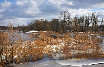 Сможет ли снежный январь повлиять на новый сельскохозяйственный год на Кубани