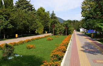 Local Dwellers to Choose Areas for Landscaping