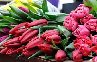 В Краснодаре будут продавать цветы на 43 торговых площадках