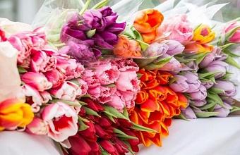 В Краснодарском крае открыли 60 цветочных ярмарок