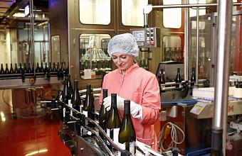 В Крымском районе Кубани откроют завод тихих вин