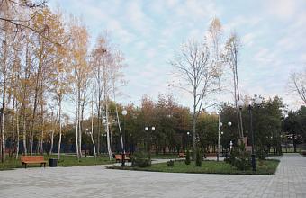 Онлайн-голосование по благоустройству зеленых зон в Краснодаре продлится до 30 мая