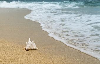 На Кубани спрос на сотрудников пляжных зон за год вырос в 6 раз