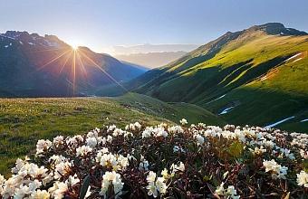 Кавказский заповедник откроет три объекта для бесплатного посещения в честь своего 97-летия