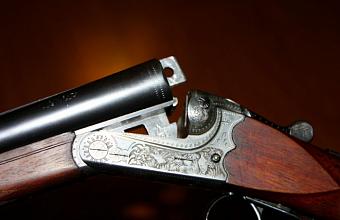 Владимир Путин поручил изменить нормы закона о гражданском оружии