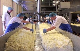 С чем столкнутся производители молочной продукции после ввода цифровой маркировки