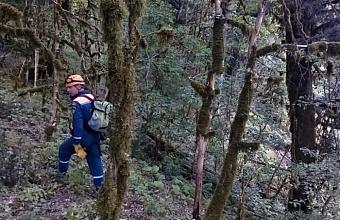 Спасатели Сочи помогли выйти из леса женщине, потерявшей тропу в горах