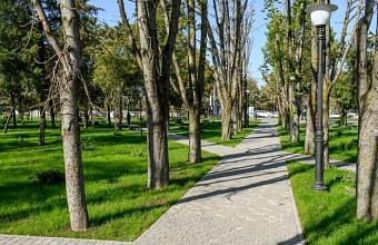В Краснодаре волонтеры помогают всем желающим голосовать за зеленые зоны