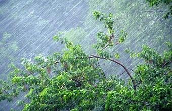 В Краснодарском крае ожидаются дожди с грозами и градом
