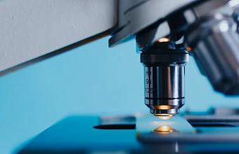 Крупный генетический центр откроется в «Сириусе»