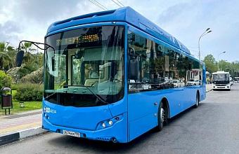 Новые пассажирские автобусы, работающие на природном газе, тестируют в Сочи
