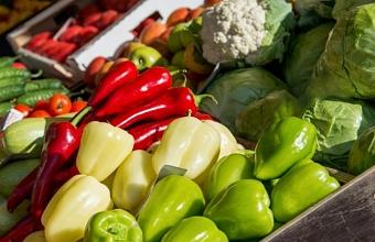 В Краснодаре на ярмарках выходного дня 200 производителей представят свою продукцию