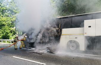 В ДТП с двумя автобусами на Кубани пострадали 8 детей и водитель