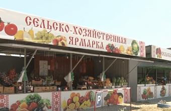 В Анапе обновленные ярмарки освободят от перекупщиков