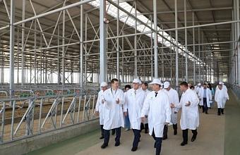 В Каневском районе депутатам ЗСК рассказали о новых технологиях в сельском хозяйстве