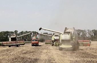 Губернатор Кубани призвал сбалансировать цены на минеральные удобрения