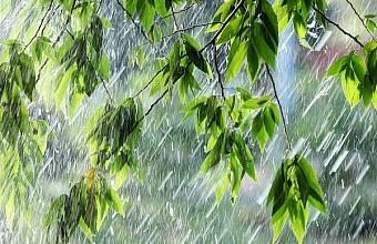 В Сочи в начале недели ожидаются сильные дожди с грозами