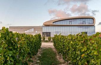 Анапская винодельня стала единственным российским проектом на международном архитектурном фестивале
