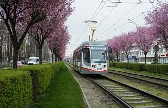 Трамвай №4 в Краснодаре на три дня сократит время работы