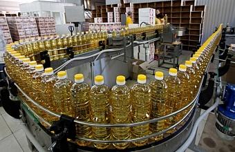 С начала года экспорт сельхозпродукции Кубани вырос на 20%