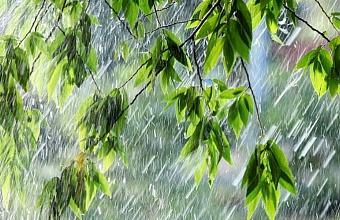 Жителей Сочи предупредили о ливнях с грозами