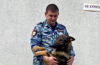 На Кубани служебная собака помогла найти пропавшего ребенка