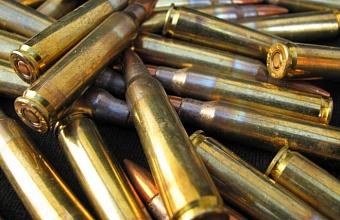 На Кубани пограничники пресекли попытку вывезти в Абхазию травматический пистолет и патроны