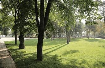 В Краснодаре благоустройство зеленых зон по нацпроекту завершат в октябре