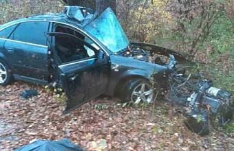 В Горячем Ключе иномарка врезалась в дерево, погибли два человека