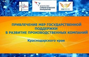 Предприниматели Кубани смогут на вебинарах узнать о государственных мерах поддержки