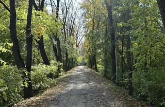 К реконструкции краснодарской Тропы здоровья приступят в 2022 году